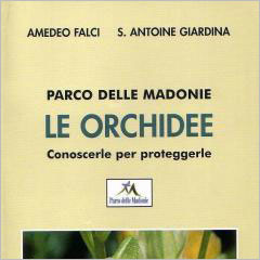 Le-orchidee